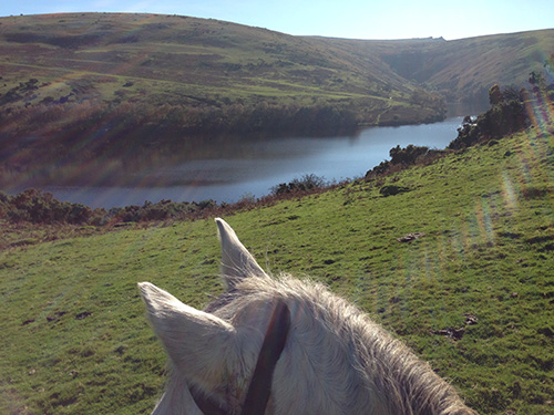 Riding on Dartmoor