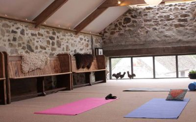Yoga in The Loft