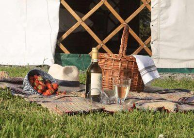 great-link-yurt-devon-holidays-19
