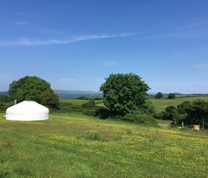 Great Links Yurt - Devon yurt holidays