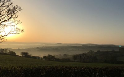 Stunning Sunrises at Borough Farm