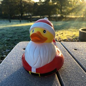 Santa rubber duck at Devon Yurts