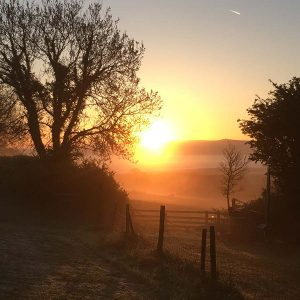 Sunrise over frosty field at Devon Yurt Holidays