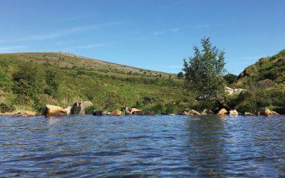 Wild Swimming in West Devon