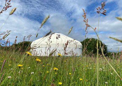 Devon Yurt in its own paddock